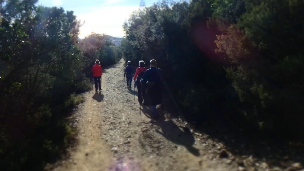 nordic_walking_barcelona_collserola