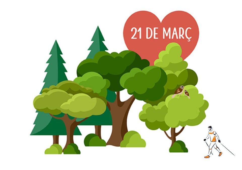 21 de març, dia internacional dels boscos