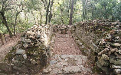 El romànic de Collserola: Sant Vicenç del Bosc – Sant Medir – Sant Adjutori
